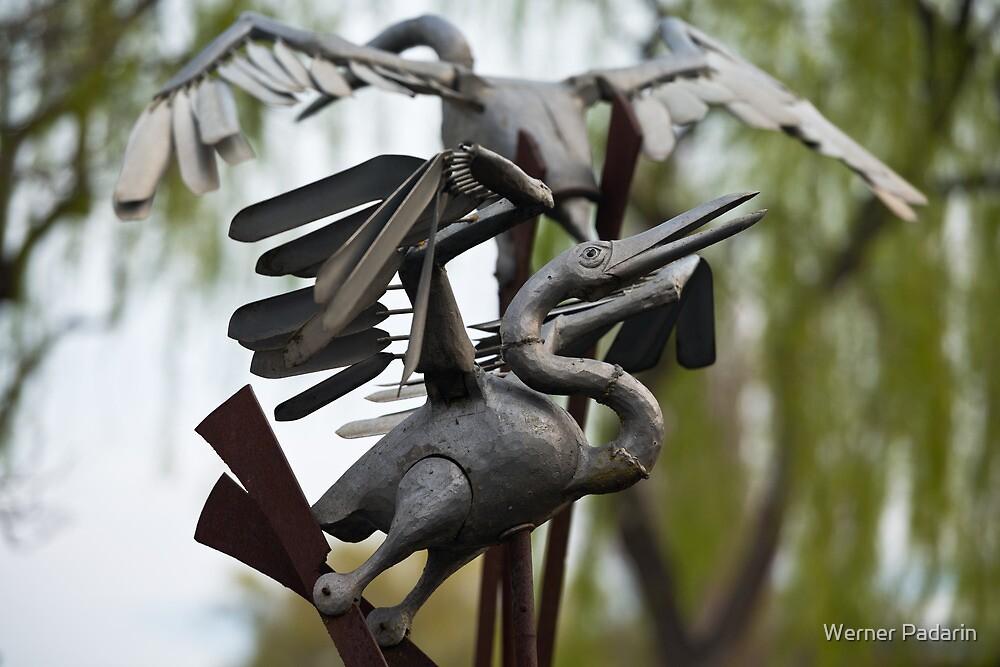 Untitled Birds by Werner Padarin