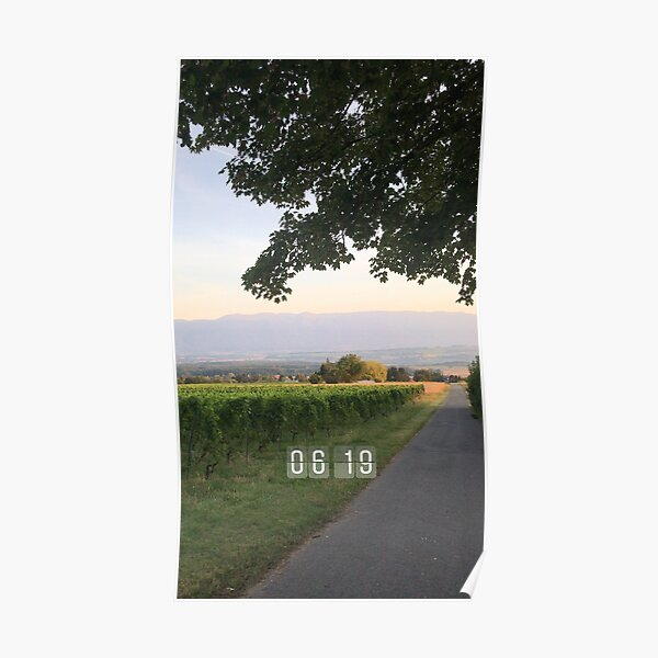 Vineyards in the morning  Poster