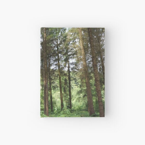 From the Glade Hardcover Journal