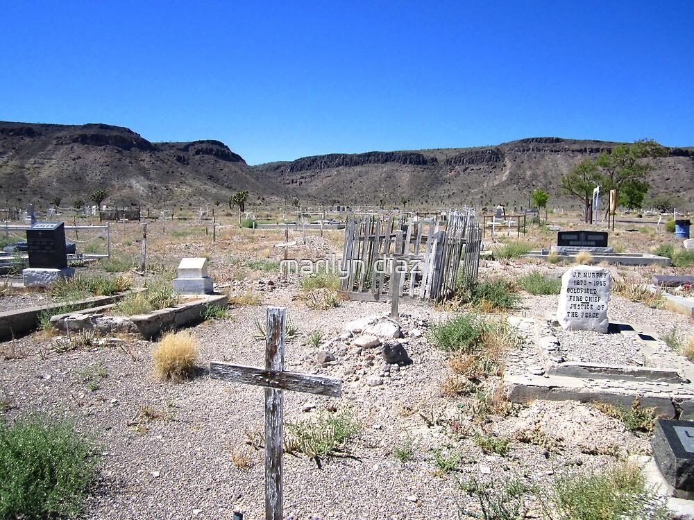 Goldfield Nevada Graveyard by marilyn diaz