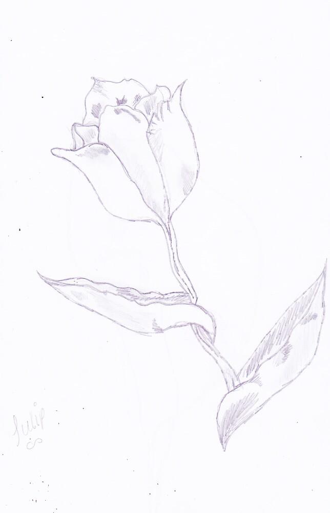 Tulip by mollisumner
