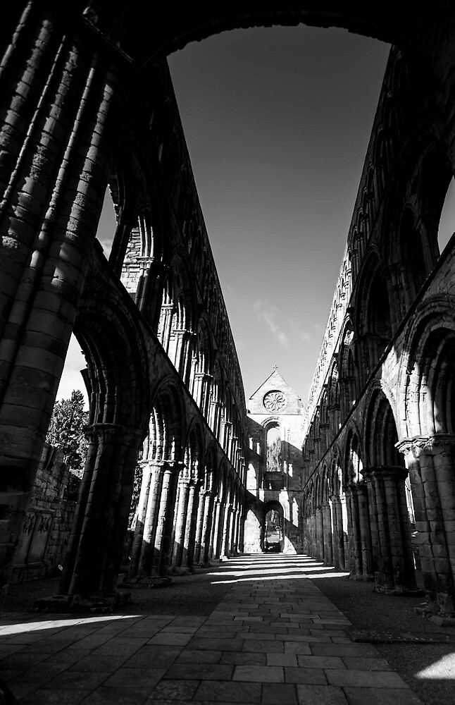 The Nave, Jedburgh Abbey, Scottish  Borders by Iain MacLean
