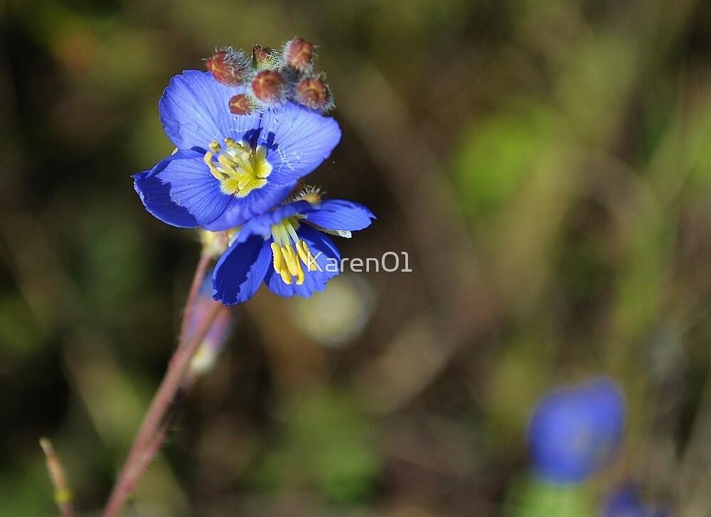 Beautiful blue by Karen01