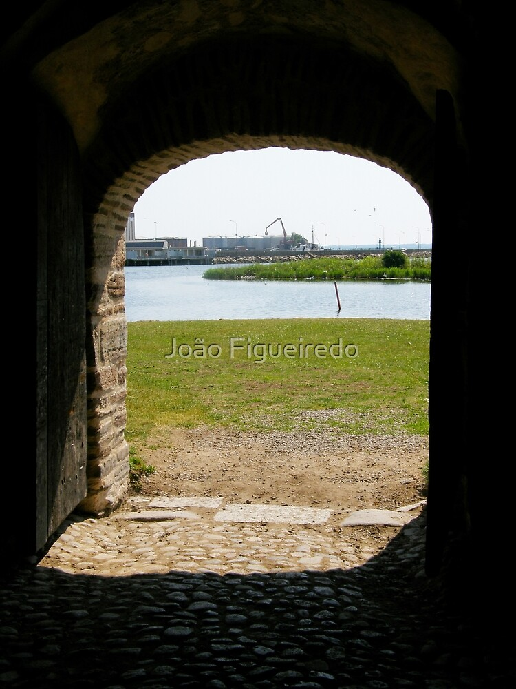 There is a world outside... by João Figueiredo