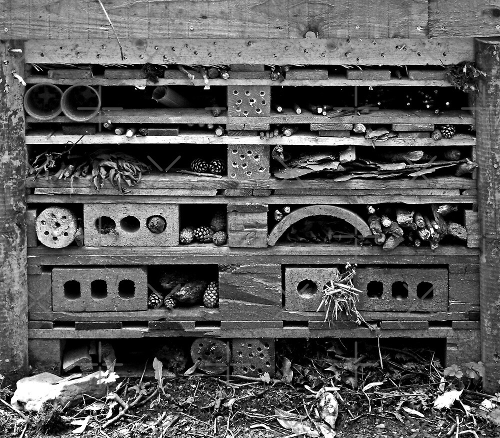 Insect Hotel by Yampimon