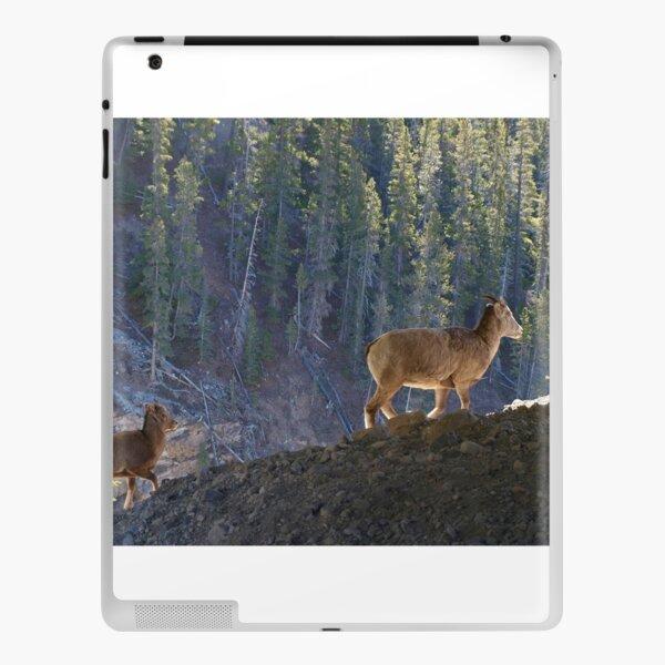 Mountain Goats iPad Skin