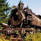 Left to Rust by stevefinn77