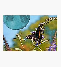 Once Upon a Blue Moon Photographic Print