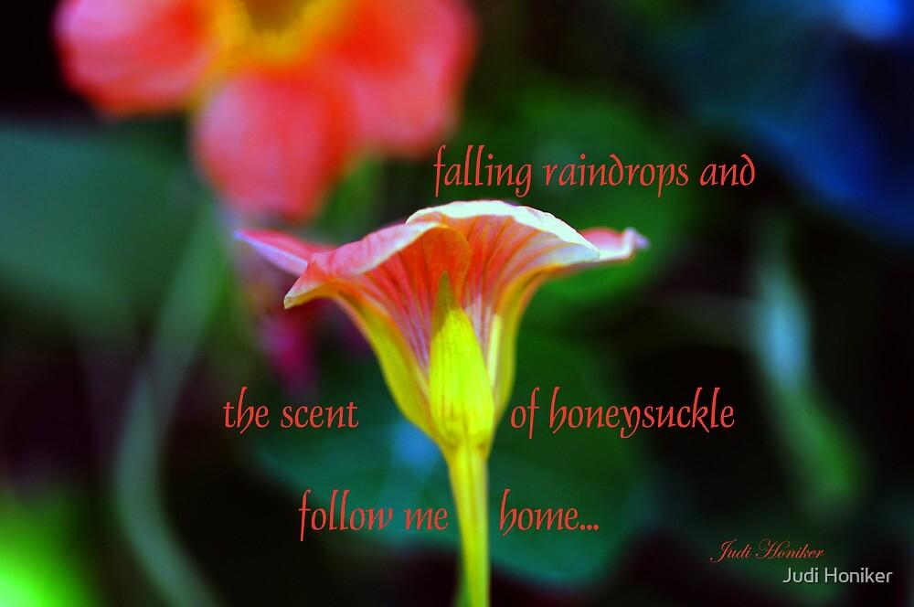 Falling Raindrops and... by Judi Honiker