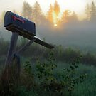 Morning Mailbox by Charles Plant