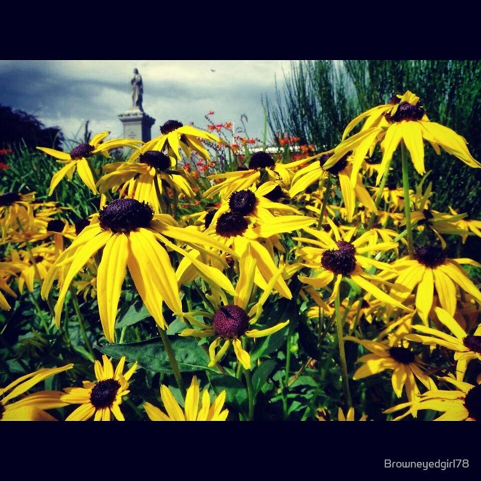 Flowers in Marple Memorial Park by Browneyedgirl78