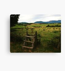Countryside Fence Canvas Print