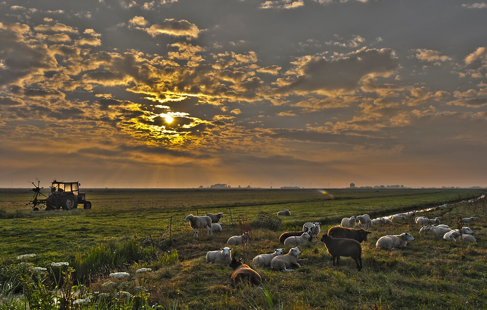 Eempolder by THHoang