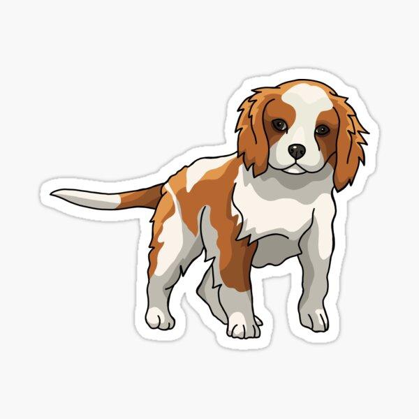 Cavalier King Charles Spaniel Illustration Sticker