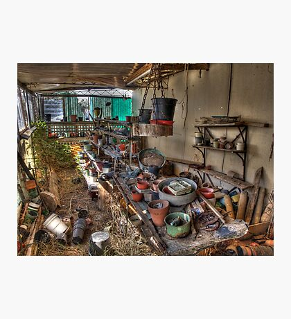 Old Plant Nursery Shed Photographic Print