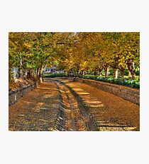 Bendigo Creek HDR Photographic Print