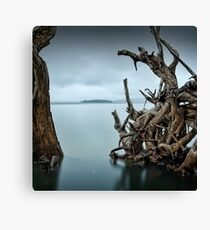 Floating Island Canvas Print