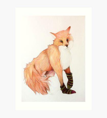 Fox with striped socks Art Print