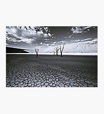 The Barren Land of Dead Vlei Photographic Print