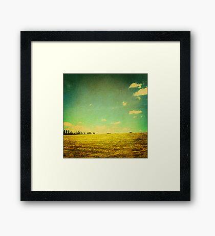 A Summer's Day Framed Print