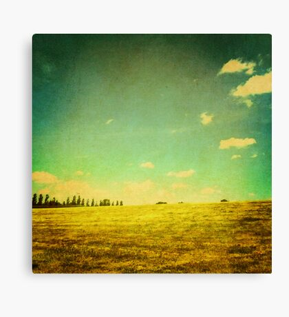 A Summer's Day Canvas Print