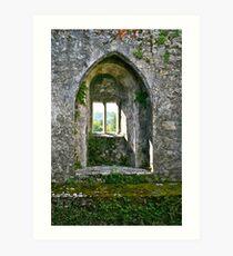 Foliage on Blarney Castle Window, County Cork, Ireland Art Print