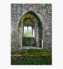 Foliage on Blarney Castle Window, County Cork, Ireland Photographic Print