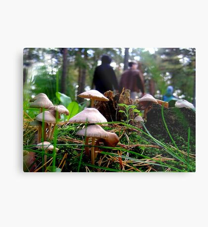 Sunday walk in forest park Metal Print
