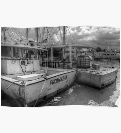 Fishing Boats at Potter's Cay in Nassau, The Bahamas Poster
