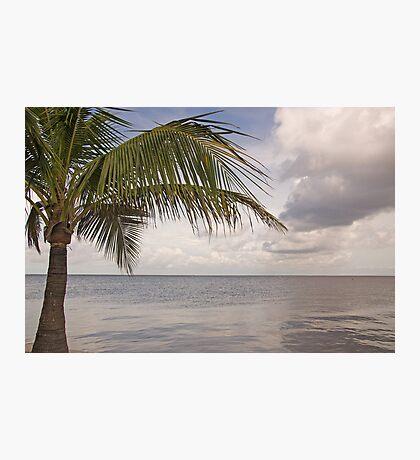 Serenity Now  Photographic Print