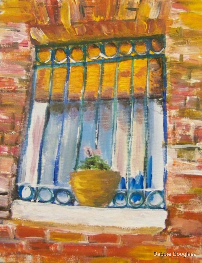 A Window in Venice by Debbie Douglass