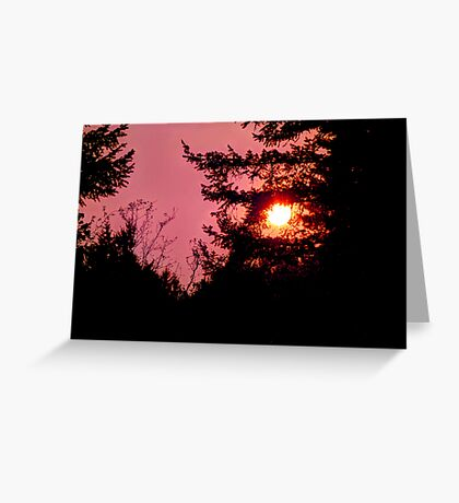 September Sun Greeting Card