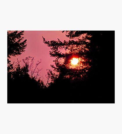 September Sun Photographic Print