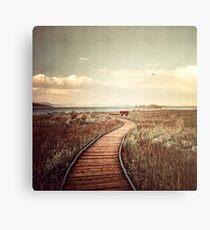 Mono Lake unplugged Canvas Print
