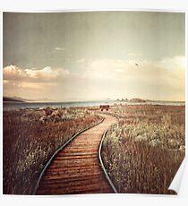 Mono Lake unplugged Poster