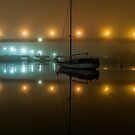Blackwattle Bay by Jason Ruth