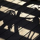 Shadowed Ride by Tracy Friesen