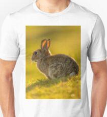Cute Rabbit Wildlife Golden Hour T-Shirt