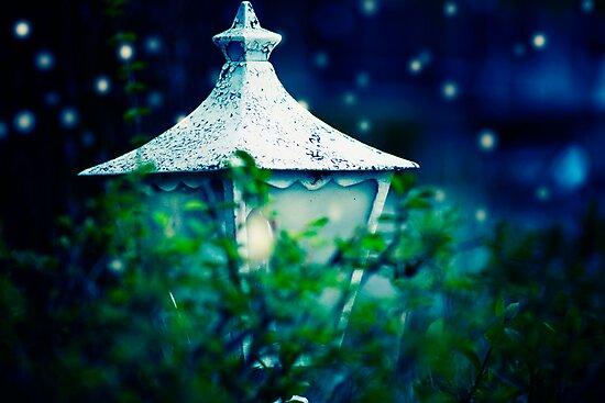 Where The Fairies Live by sandra arduini