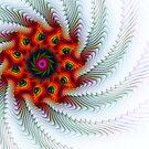 Pinwheel Gnarl by Virginia N. Fred
