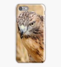 Red Kite Stare iPhone Case/Skin