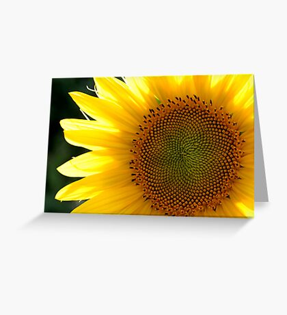 sunny Greeting Card
