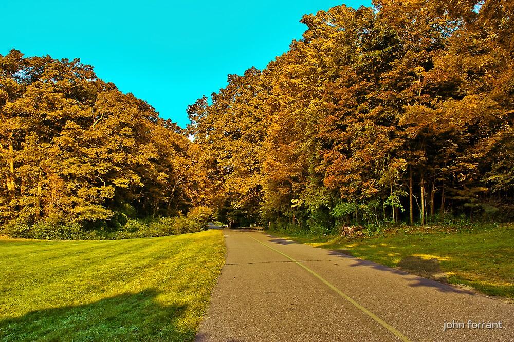 A little fall  magic by john forrant