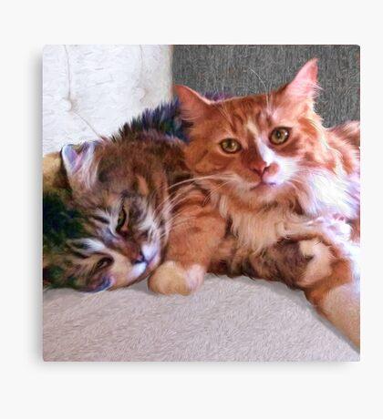 """Sophie & Ginger"" Close Up Canvas Print"
