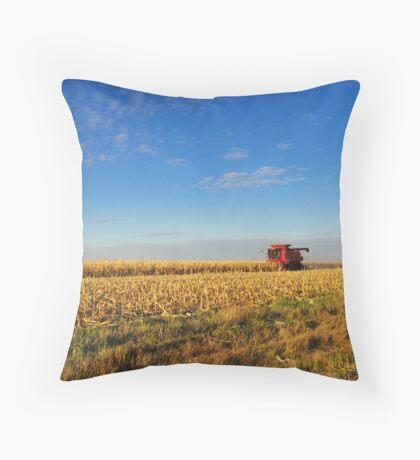 Evening Harvest Throw Pillow