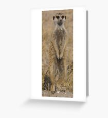 Meercat under Review Greeting Card