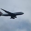 In flight by davidbloomfield
