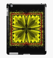 2015-11-17-004 iPad Case/Skin
