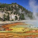 Grand Prismatic Spring by Gene Praag