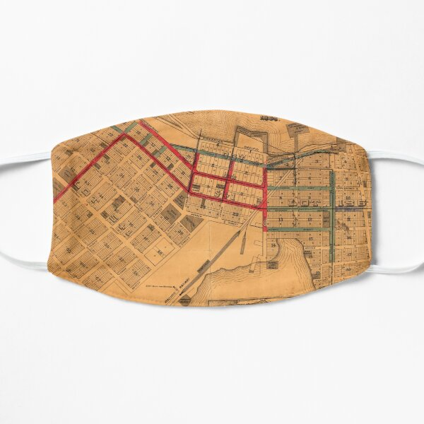 Map of the business portion of the City of Vancouver, British Columbia [early street paving] Mask